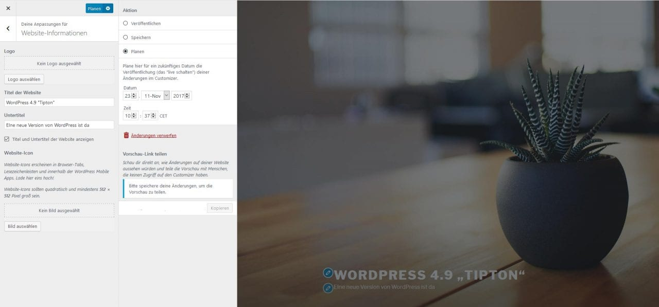 Screenshot WordPress 4.9