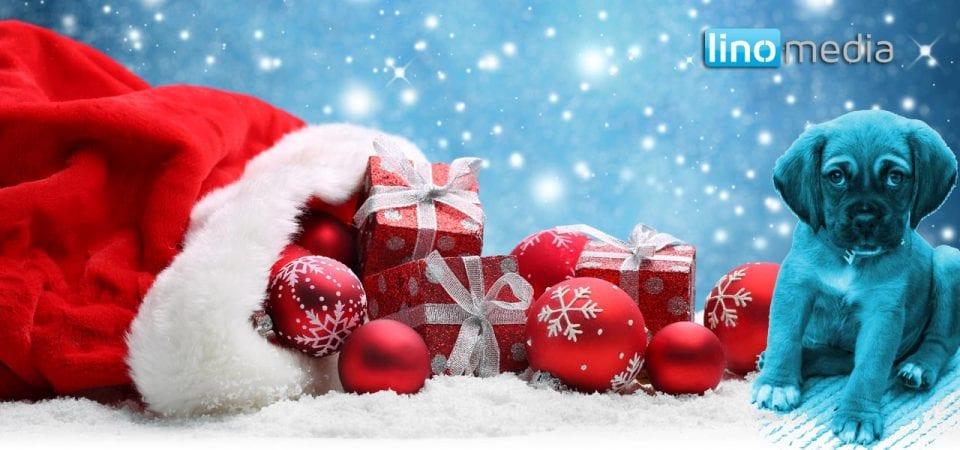 Frohe Weihnachten wünscht linomedia
