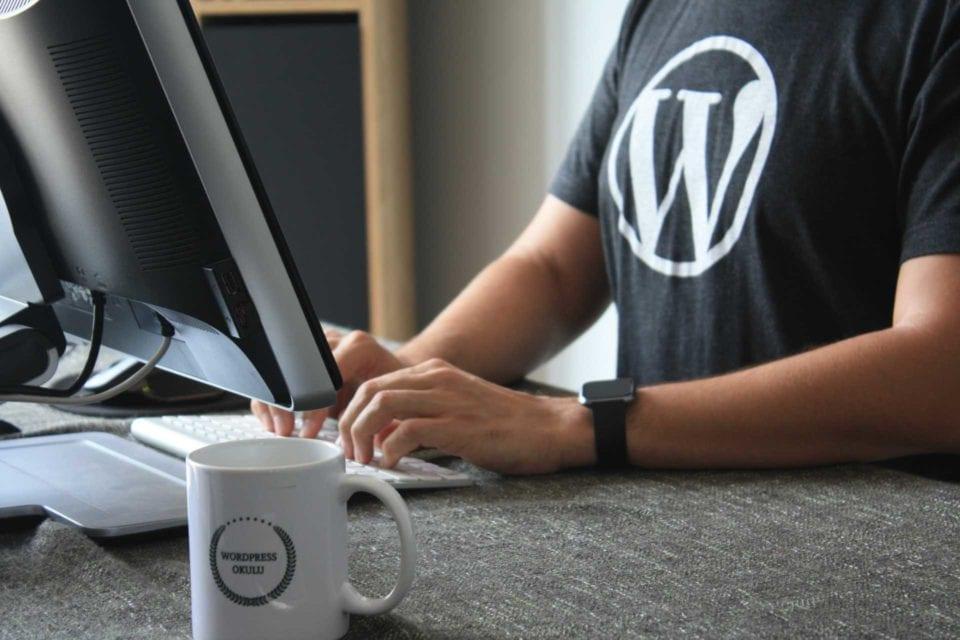 WordPress Logo - T-Shirt